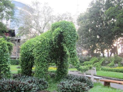 Un éléphant taillé  dans haie.