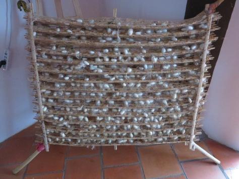 Les cocons de soie