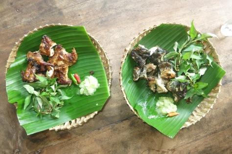 A droite, le rat des rizières, à gauche, la grenouille