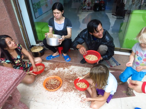 Toute la famille au travail pour émonder les cacahuètes