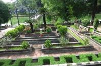 Perdus dans le labyrinthe des jardins