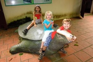 Au centre de conservation des tortues