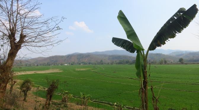 Rando et vélo à Hsipaw