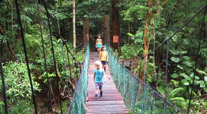 Le parc national de Kubah et la réserve d'animaux de Matang
