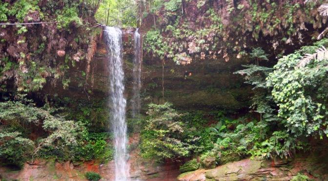Deux jours au parc national de Lambir Hills