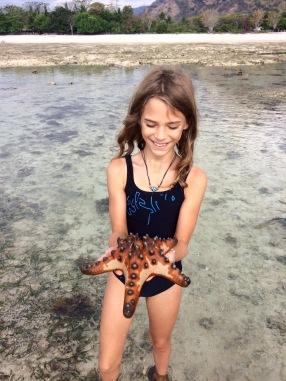 Une grosse étoile de mer