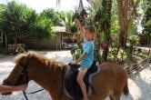 Loïc à cheval