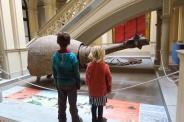 Un glyptodon au MAPI