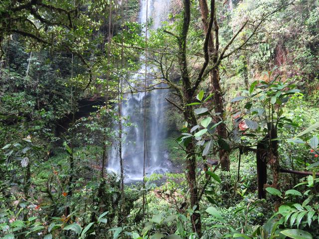 Aux portes de l'Amazonie