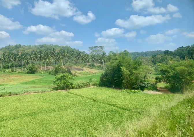 Ayubowan, Sri Lanka
